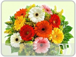 Blumenstr�u�e