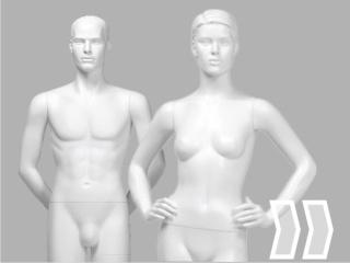 Mannequins/Torsen