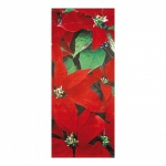 # Banner Osna,  75x180cm,  rot/grn