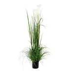 Reed 5-fold, in pot 150cm Color: green/white
