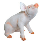 Pig, sitting polyresin, for in- and outdoor 43x27x36cm...