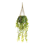 Hanging plant fabric, in clay pot 80 cm, Ø 25 cm Color:...