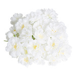 Cherry blossoms 72pcs./bag, artificial silk Ø 4cm Color:...