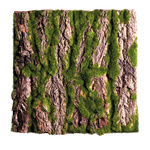 Bark plate covered with moss, with real bark 30x30cm...
