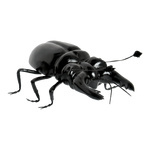 Stag beetle made of styrofoam 25x12x8cm Color: black/brown