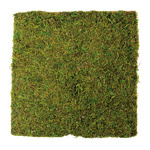 Moss plate natural moss on paper base 30x30cm Color: natural