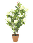 EUROPALMS Rose shrub, artificial, cream, 86cm