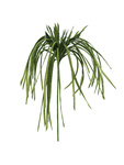 EUROPALMS Sea grass (EVA), artificial, green