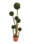 EUROPALMS Box ball tree, artificial,  163cm