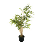 Bamboo tree in plastic pot 100cm Color:...