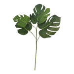 Philodendron spray 5-fold 60cm Color: green