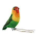 Parrot styrofoam with feathers 15x6x10cm Color:...