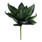 Pineapple leaves bundle 17-fold 50cm Color: green
