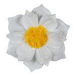 Paper flower with hanger Ø60cm Color: white