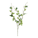 Hop branch 3-fold,, with 9 leaves 75cm Color: green