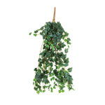 Ivy hanger 13-fold 80cm Color: dark green