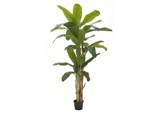EUROPALMS Banana tree, artificial plant, 240cm