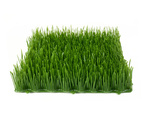 EUROPALMS Artificial grass tile, shade, 25x25cm