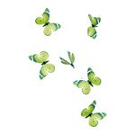 Butterfly with clip 6pcs./box, pvc 11cm Color: green
