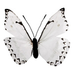 Butterfly made of paper H: 30cm Color: white