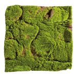 Moss mat made of plastic and felt 50x50cm Color: green