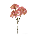 Skimmia pick 3-fold 36cm Color: pink