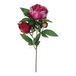 Peony sprig 3-fold 70cm Color: pink