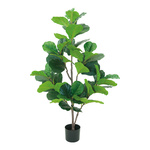 Fiddle fig tree in plastic pot, with 54 leaves, fabric &...