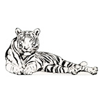 Cut-Out »Tiger« foldable backside support 80x50cm Color:...
