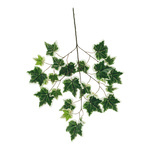 Ivy twig with 25 leaves, artificial silk 70x40cm Color:...