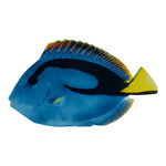 Tropical fish printed double-sided, wood, with hanger...