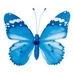 Butterfly with clip pvc 20x30cm Color: blue