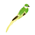 Bird with clip styrofoam with feathers 40x7x7cm Color: green