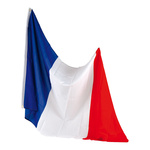 Flag artificial silk, with eyelets 90x150cm Color: France