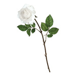 Rose artificial silk 60cm Color: white