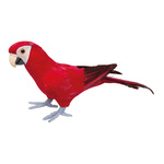 Parrot, standing styrofoam with feathers 36x13cm Color: red